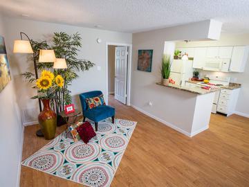 1x1 Kitchen/Living Room - Stadium View - College Station, TX